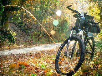 Biciklik kicsiknek és nagyoknak